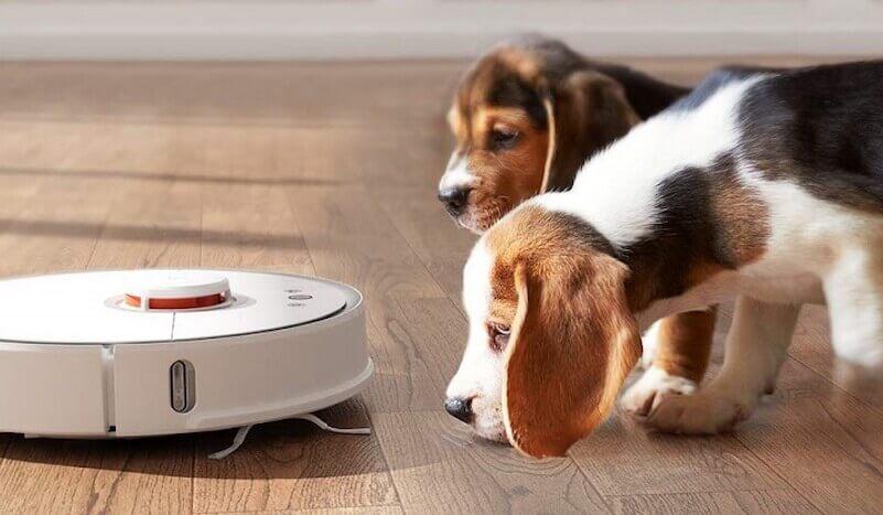mejores robots aspiradores para mascotas